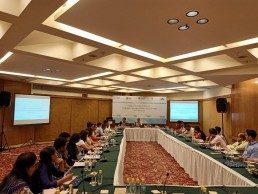 Capacity-strengthening workshop, Delhi, India.