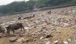Open space in Madanpur Khadar, New Delhi, that is used for dumping and open defecation. Credit - Geci Karuri-Sebina and David Everatt