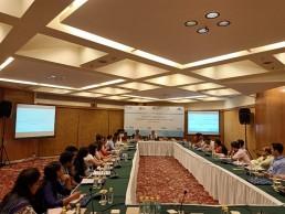 Capacity-strengthening workshop, Delhi, India.